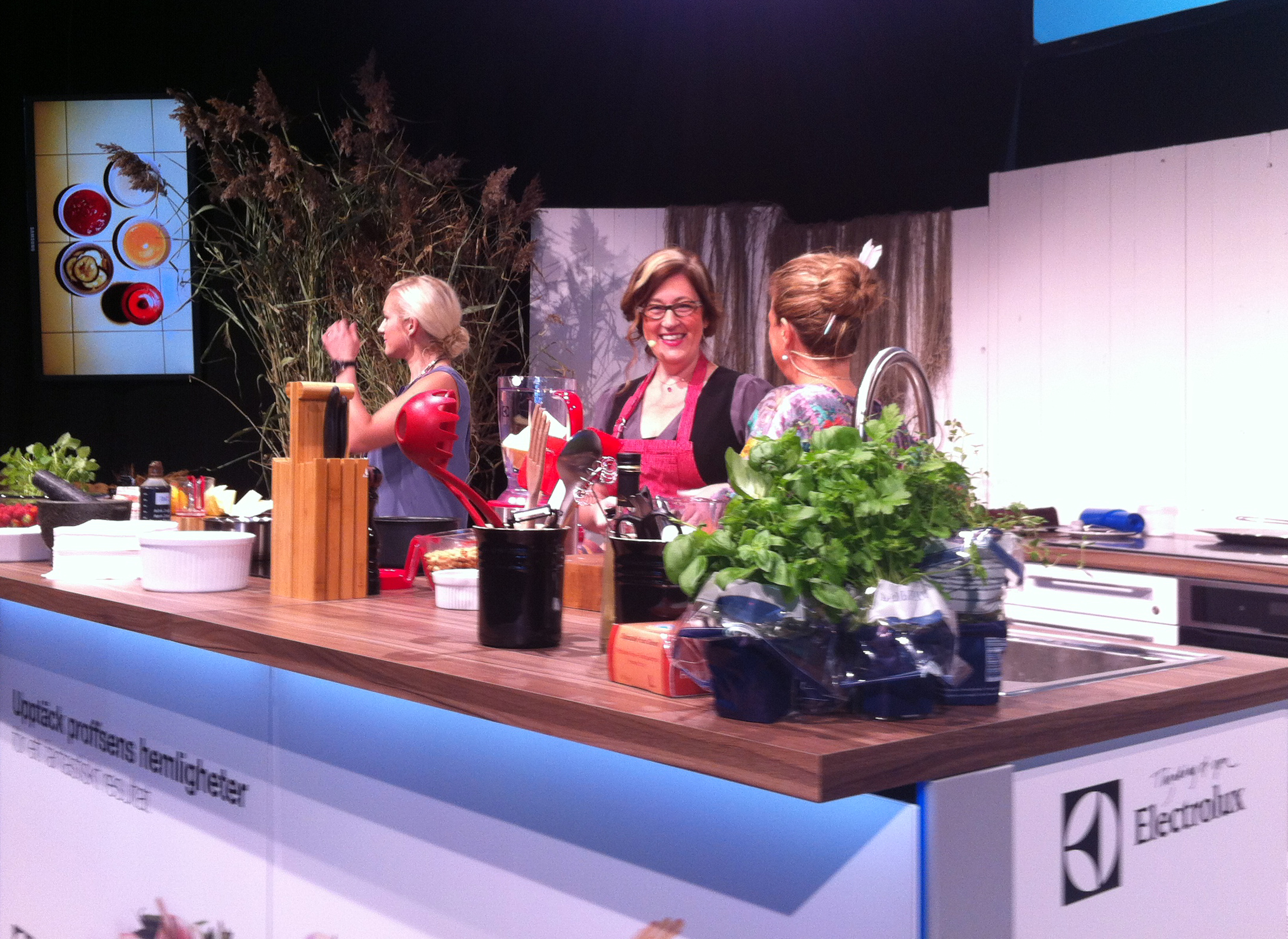 Anette Rosvall on stage bokmassan 2013